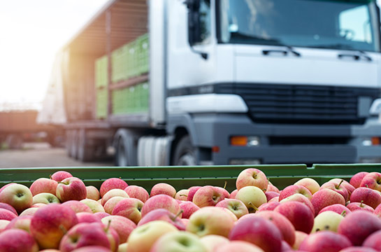 Ourgreen-XPS-insulation-boards-for-food-transportation